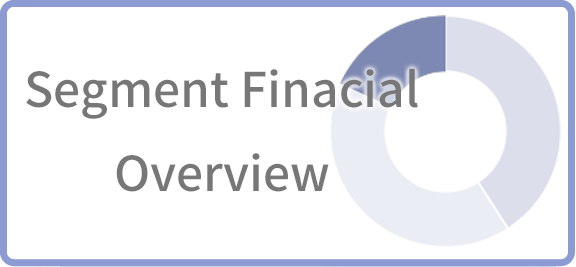 Segment financial overview